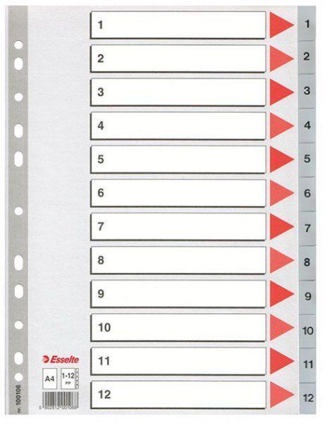 Rozdružovač A4 plast 1-12 Plastové rejstříky z tuhého polypropylenu pro číselné nebo abecední třídění. - multiperforace umožňuje založení rejstříku do kroužkového i pákového pořadače -popisovatelný titulní list pro snadnou orientaci v zakládaných dokumentech Číslování: 1-12 Formát: A4
